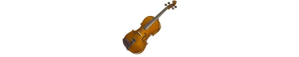 viole, violoncelli